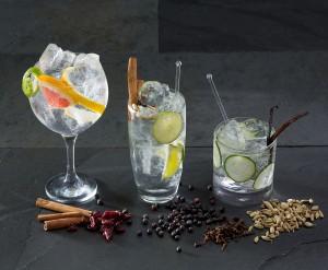 Terrasdrankje 2015 : Gin! (met tonicwater + limoen-citroen-komkommer enz)