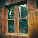 Feuilleton – 63 – Du vin, du pain, du pindakaas : Die niet waagt, die niet wint