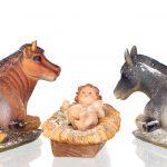 De Kerststal met os en ezel